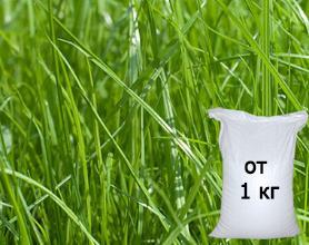 Спортивный газон семена москва